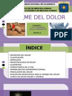 Síndrome Doloroso.presentación Final
