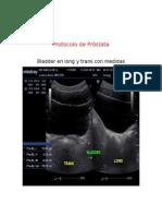 protocolo de prostata