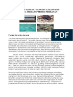 Fungsi Dan Manfaat Terumbu Karang Dan Perannya Terhadap Sistem Perikanan