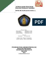 Laporan Akhir Praktikum Ubi Jalar.docx