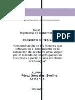 INFORME 01. ind. lacteas