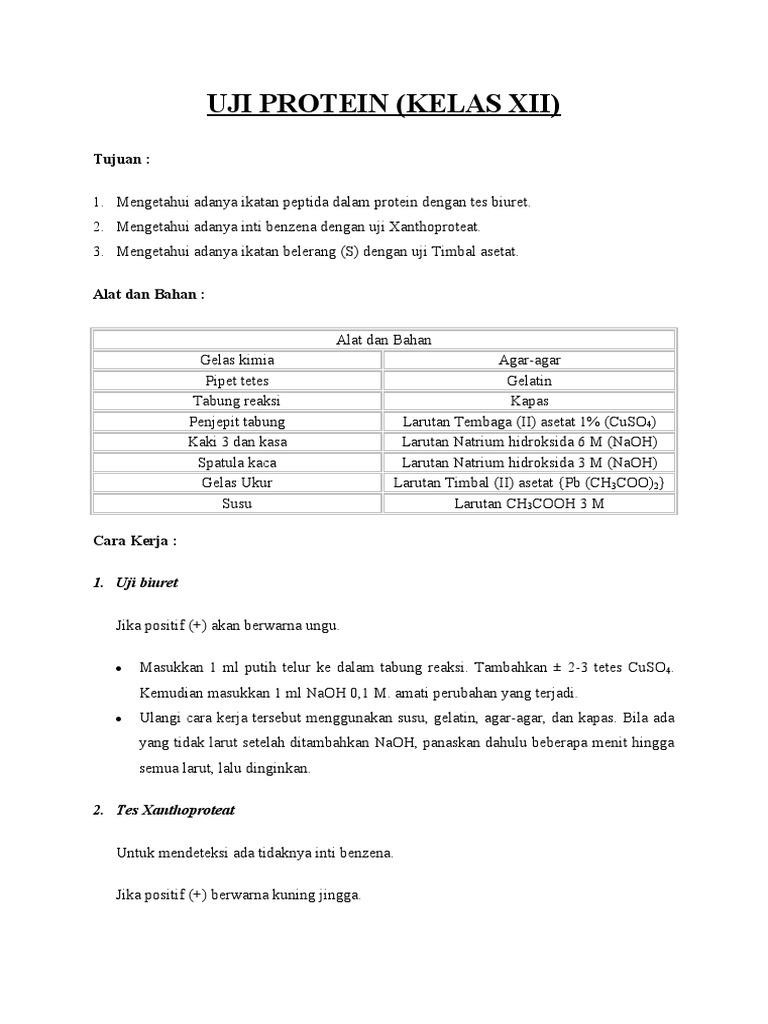 Laporan Praktikum Kimia Uji Protein