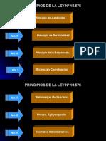 Principios Ley 18575