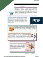 Desarrollo Psicoafectivo y Cognitivo 4