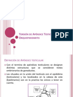 Torsión de Apéndice Testicular y Orquidoepidemitis