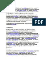Célula eucariota.bill.docx