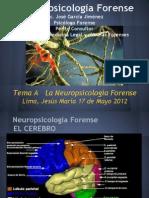 Diapositivas Neuropsicologia Forense Diapositivas
