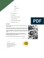 Ingredientes para cuatro raciones.docx