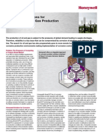 TOP LIRE Corrosion Solutions for Multiphase Oil & Gas Production