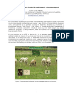 opciones parasitosis ovinos