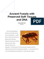 Ancient Fossils with Preserved Soft Tissues and DNA