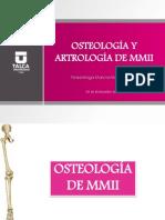 Osteología y Artología de Mmii(2)