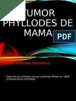 Tumor Phyloides de Mama