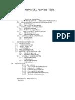 Desarrollo de La Estructura Del Plan de Tesis Ampliado