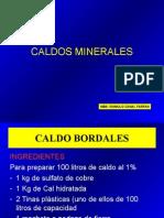 4 CALDOS MINERALES