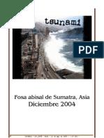tsunami asia 2004 analisis