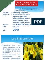 Flavonoides Citrus Limon Power Point [Autoguardado]