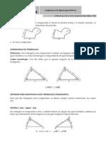 congruencia de fig geo_william reyes.pdf