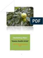 Marketing Plan of Guava Health Drink