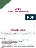 5. Lipide