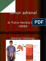 Adrenal Tumor 2-10-15