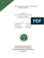 Laporan Data Kecelakaan Lalu Lintas Di Kecamatan Dau Kabupaten Malang