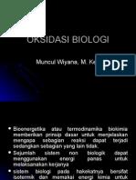 biooksidasi yayan2.ppt