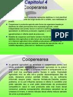 Curs II IEA Cooperare