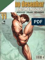 CBdD 11 - Anatomia Masculina