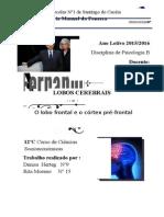 Trabalho Psicologia LOBOS CEREBRAIS