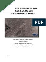 Reporte Geologico de La Zona Sur de Las Casuarinas