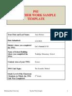 teacer work sample