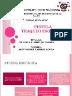 atresiaesofagicafistulatraqueoesofago-121206183738-phpapp01