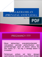 Masa Kehamilan