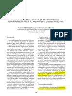 El Palafito Como Habitat Milenario Persistente y Reproducible Modelos Palafiticos en El Lago de Maracaibo