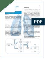 TB pulmonar