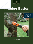 Conceptos basicos de Poda.pdf