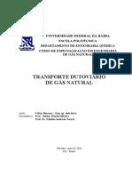 Transporte Dutoviário de Gás Natural