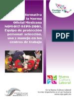 Guia Informativa Norma017