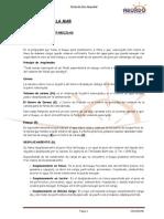 APUNTES PY.pdf