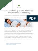 Fiebre tifoidea (Causas, Síntomas, Tratamientos y Remedios)