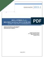 Quimica Organica Experimental_Relatorio 5 e 6 - Cristalização e Sublimação.pdf