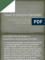 Tipuri Si Structuri Familiale