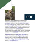 Bioculinizacion artemial