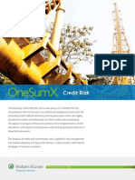 OneSumX Credit Risk Solution Primer