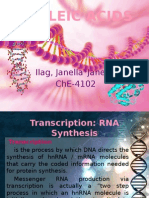 Nucleic Acids - Janella Jane Ilag