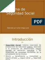 Sistema de Seguridad Social.pptx