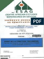 Audit de la fonction trésorerie.PDF