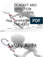 Safety Audit and Inspection - Janella Jane Ilag
