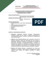 Estructura Del Proyecto Sociotecnlógico Pnfiyc